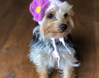 The flower dog hat. Fun hat, bonnet for your puppy, cat, pet. Uk seller. Choose your size