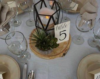"8-9"" Aspen Large Wood Slices - Wood Charger - Wood Centerpieces - Wood Slab Centerpieces - Wood Slice Centerpieces - Rustic Wedding Decor"