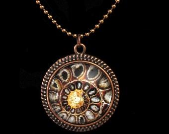 Ammonite Fossil  Glass Photo Pendant Necklace