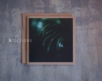 Fern macro Photo Card - Deep in the woods