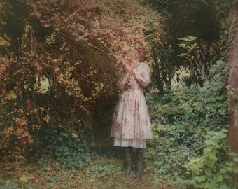 Postcard 'Red Tree'