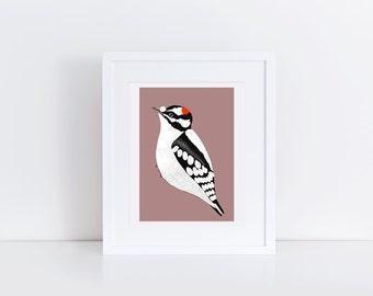 Downy Woodpecker Print / Bird Illustration / 5x7 Original Illustration Print