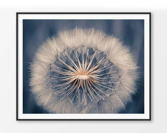 Printable Dandelion Photography, Instant Download Dandelion Wall Art, Farmhouse Wall Decor, Nature, Calm, Country Decor Style