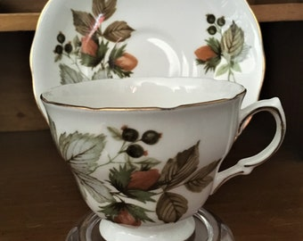 Royal Vale Teacup and Saucer - Autumn Berries - 8318