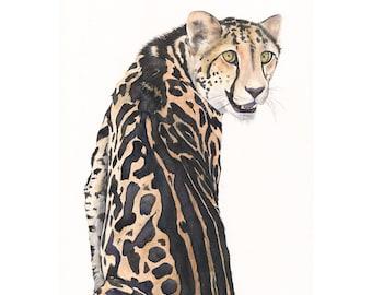 Cheetah Watercolor Painting- animal art- print of watercolor painting A4 print