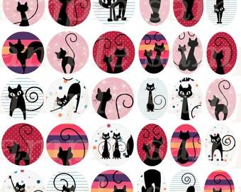 60 Digital images Cats 13-18mm / 18-25mm / 20mm / 25mm