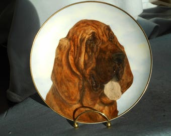bloodhound hand painted porcelain plate