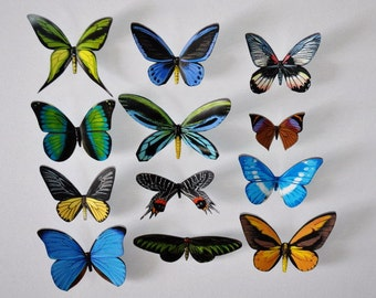 Butterfly Magnets, Refrigerator Magnets, Insects, Set of 12, Handmade, Home Decor, Gifts, Kitchen Decor,