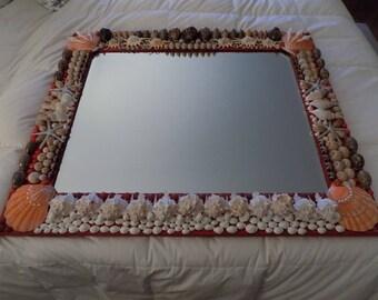 Specimen sea shell mirror.