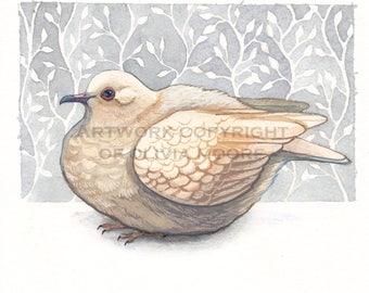 Bird Art - Dove Art - Original Watercolor Painting - Woodland Home Decor
