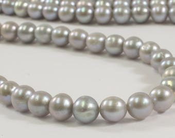 7 -7.5 mm AAA Gray Semi-Round / Potato Freshwater Pearls, Genuine Pearl Beads, Silver Gray Freshwater Pearl, Cultured Pearl(187-LHPGY0775)