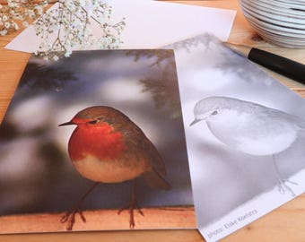 Robin - Map postcard 10 x 15 cm