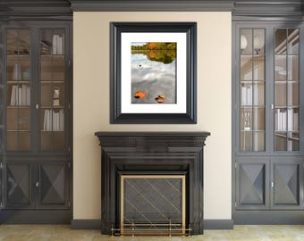 Botanical Nature Photograph Floating By Fine Art Canvas - Home Decor Unframed Wall Art Prints