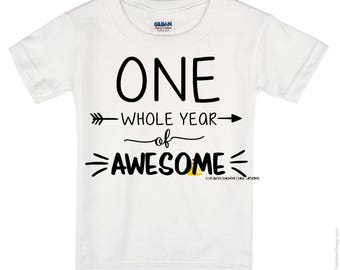 One Whole year of Awesome ~ First Birthday Football Shirt or Onesie