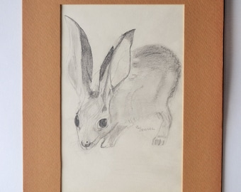 Vintage Mid Century Pencil Drawing of a Bunny Rabbit, Matted & Signed
