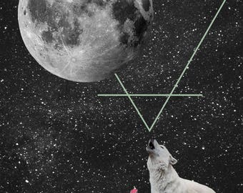 Desert Wolf Digital Download Print