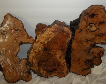 Oak Burlwood Slabs (3) Set of 3/Wall Decor/Wall Hanging/ Rustic Country Cottage Wall Decor/ Farmhouse Decor.