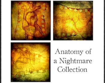 Anatomical Art, Surreal Decor, Orange, Heart, Oddities Abstract Set of Three 8x8 inch Fine Art Photography Prints, Anatomy of a Nightmare