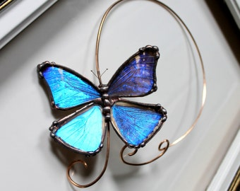 Real Blue Morpho Butterfly Brass Torc, Butterfly Choker