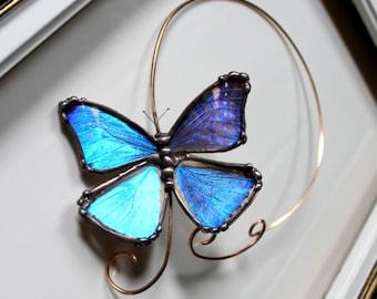 Real Blue Morpho Butterfly Brass Torc, Butterfly Choker