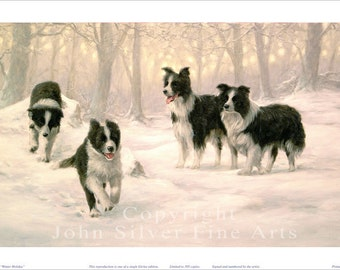 Border Collie Portrait, Winter Holiday. Limited Edition Print. Personally signed and numbered by Award Winning Artist JOHN SILVER. jsfa053