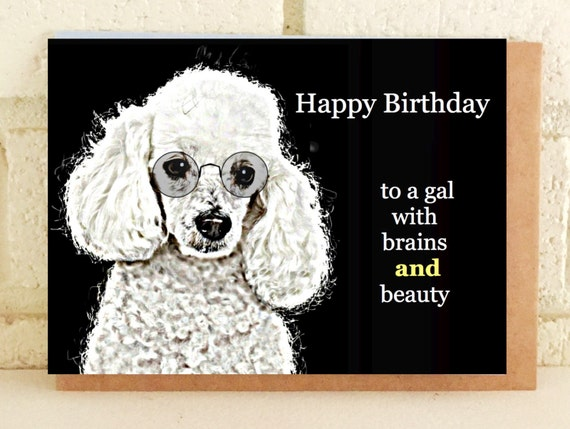Pretty poodle birthday card glasses bookmarktalkfo Gallery