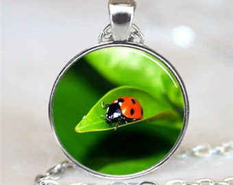 Ladybug brings good luck pendant glass cabochon necklace