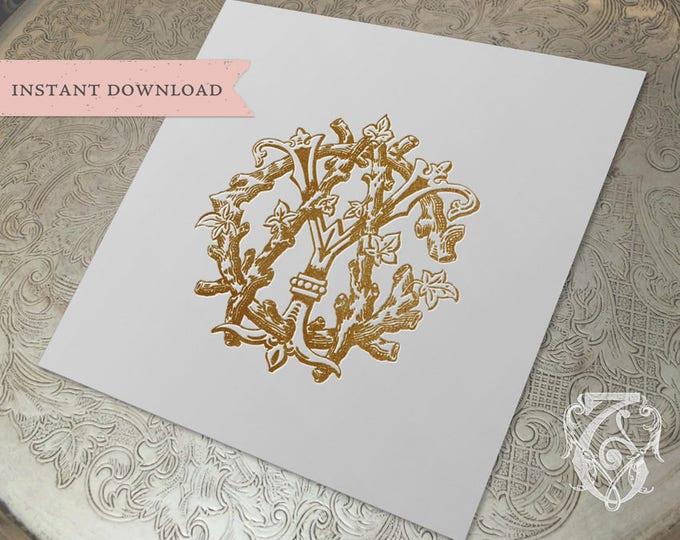 3 Initial Vintage Monogram ACY  Three Letter Wedding Monogram Digital Download CYA  YAC yCa