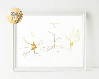 Neuroscience Neuron Art Gold Foil Print - Greys Anatomy Neuroscience Art - Nerve Cells Cell Biology, Brain Cell Wall Art Print Neuro Science