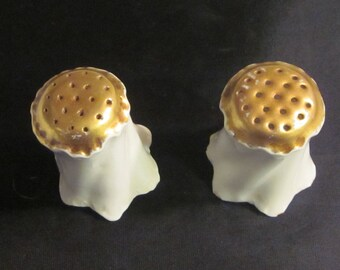 Antique Rosenthal & Co. Salt and Pepper Shakers Bavaria