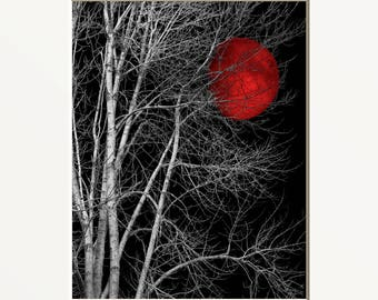 Black White Red Decor, Tree Moon Wall Art, Red Moon, Pop Of Red, Red Bed Room Wall Art Matted Picture