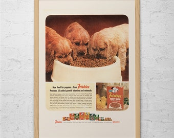 FRISKIES DOG FOOD Ad - Retro Puppies Poster - Mad Men Poster Retro Dog Poster Retro Kitsch Dog Poster