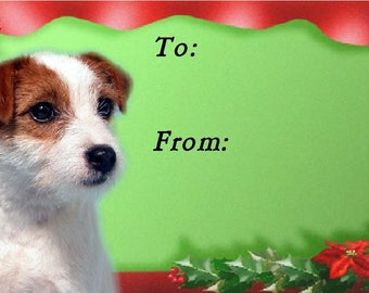 Parson Russell / Jack Russell Terrier Dog Christmas Gift Labels, Peel Off Self adhesive, 2 Sheets of 21 Labels, 42 Labels in total