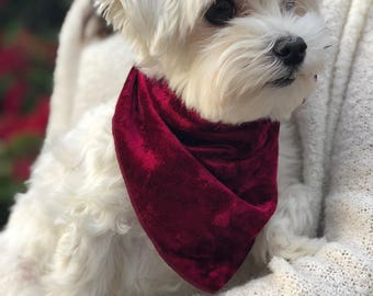 Velvet Dog Bandana - S-L Four Colors   Soft, Crushed Velvet, Holiday, Christmas, Event, Fancy, Party, Luxurious, Red, Gold, Navy, Green
