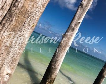Beautiful Paradise Ocean Shore Photo