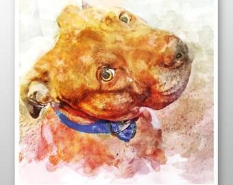 pit bull art // pet portrait // watercolor // dog // multicolor // home decor art // canvas art - Pit Bull Princess art print