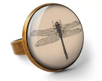 Vintage Dragonfly Ring (ER03)