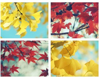 Set of 4 Autumn Photographs - Red Orange Golden Yellow Leaves - Fall Foliage - Nature Art - Autumn Gallery - Wall Decor - Nature Photograph