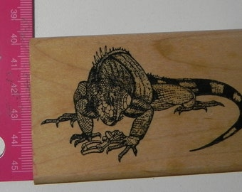 Rubber Stamps of America Iguana Lizard Rubber Stamp Wood Mount
