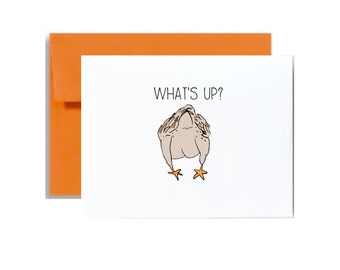 Whats up chicken butt. just because card. just saying what's up hey card. chicken brown tan little sloth card
