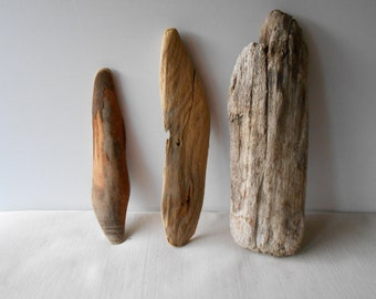 Driftwood, surf tumbled driftwood, collectible, crafting, art, natural sculpture, home decor. 3 pieces. (W24)