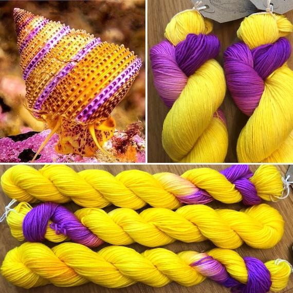 Purple Ring Top Snail Miniskein 20g, merino nylon sock yarn