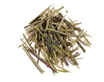 American Skullcap Scutellaria Laretiflora Loose  Stem Herb Herbal Tea