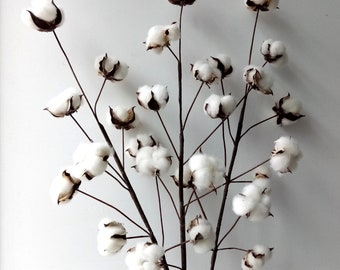 "Faux Cotton Stems~3 stems/Pack ~29"" Cotton Boll Stem~Rustic Cotton Buds Decor"