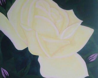 1945 Madame A. Meilland Peace Rose
