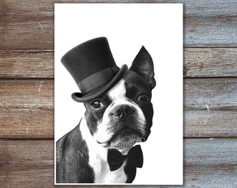 Boston terrier print, boston terrier illustration, animals in suit, dog with suit print, boston terrier wall art, portrait 8 x 10 inches