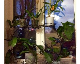 Planter. Wrought Iron Plant Stand for 11 pots, Iron Plant Stand Pot Holder, Hand forged plant holder, Flower pot holder, home iron art decor
