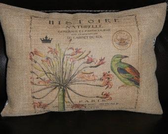 Bird Paris Burlap Pillow, Shabby Chic Decor, Farmhouse Pillows, B12, INSERT INCLUDED