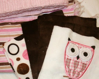"Owl Minky Appliqued Quilt Kit ""Whooo Loves You"""