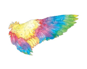 Rainbow Wing - limited edition 8 x 10 print